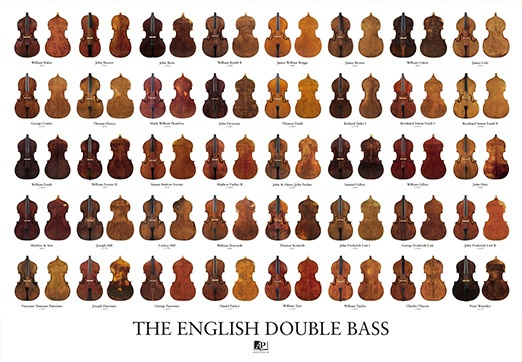 english-double-bass-poster_1755656748